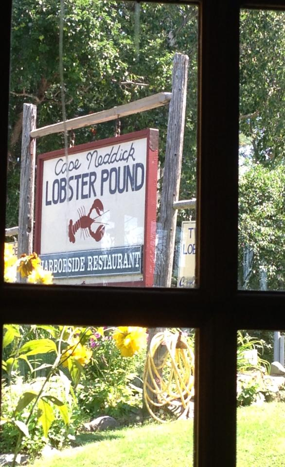 cape neddick lobster sign