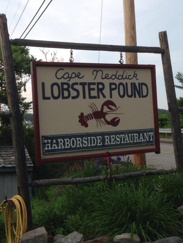 cape neddick lobster pound sign