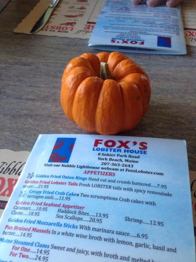 fall at foxs
