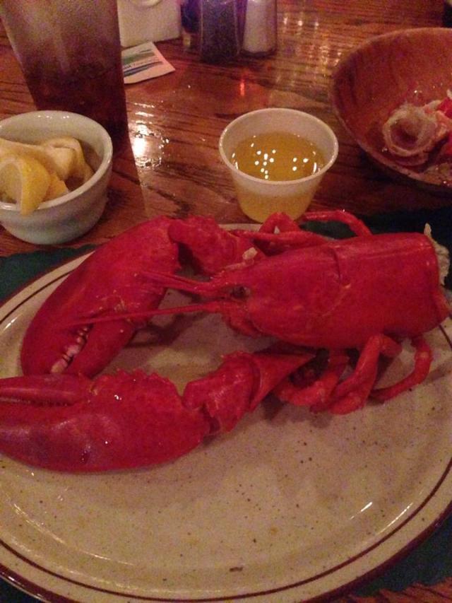 lobster at cnlp