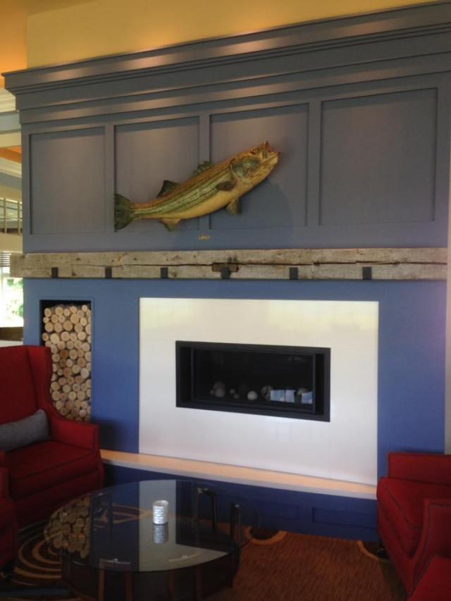 sni fireplace